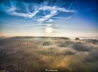 esperienza drone immagine portfolio naturalistica turismo promozione territorio italia fiume ticino nebbioline.jpg